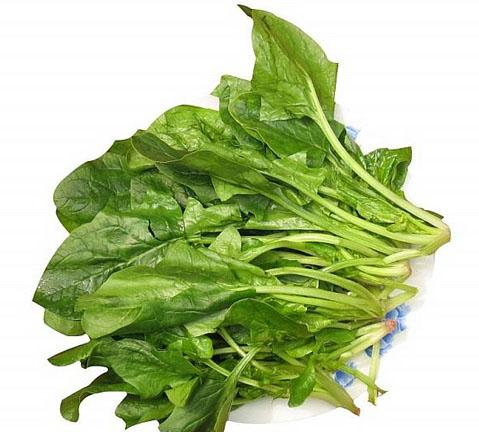 经常吃菠菜有助防老年痴呆症_2