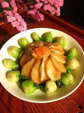 杏鲍菇浇油菜