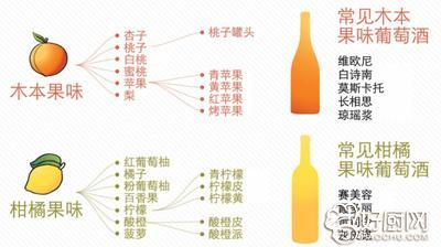 葡萄酒种类