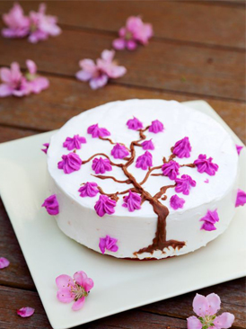 奶酪装饰棉花蛋糕