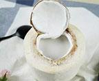 夏日清甜椰子凍