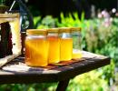 常喝蜂蜜能抗菌消炎还能促进消化
