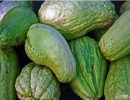 常吃佛手瓜竟能预防坏血病