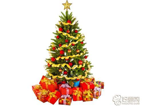 圣诞装饰和布置