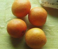 自制甜杏冰激凌的做法步骤_5