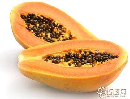 番木瓜和木瓜有什么不同_好厨网sex888-com
