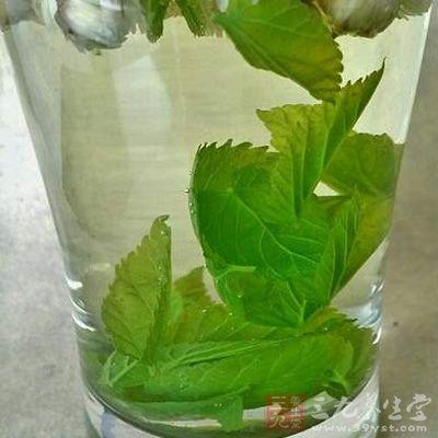 所以说,日常将桑叶泡水喝一定要注意适量,不要过度的服用.