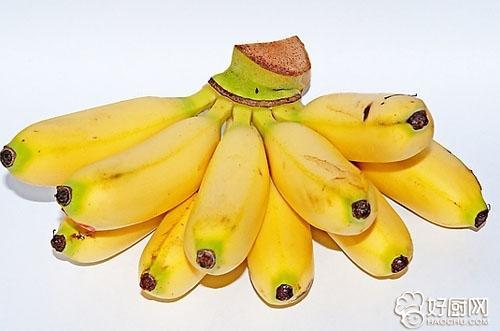 香蕉小动物造型