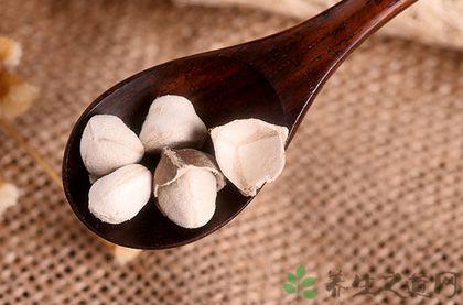 吃辣木籽有什么禁忌