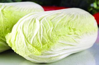白菜的烹饪指导_1