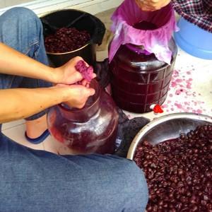 葡萄酒的制作方法_5