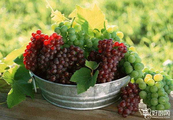 葡萄酒的制作方法_7