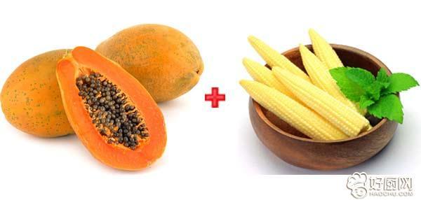 木瓜应该如何搭配 木瓜怎么吃_15
