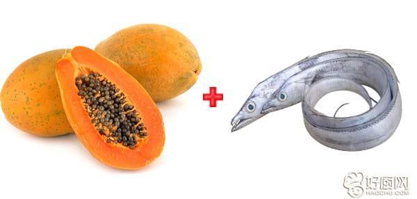 木瓜应该如何搭配 木瓜怎么吃_17