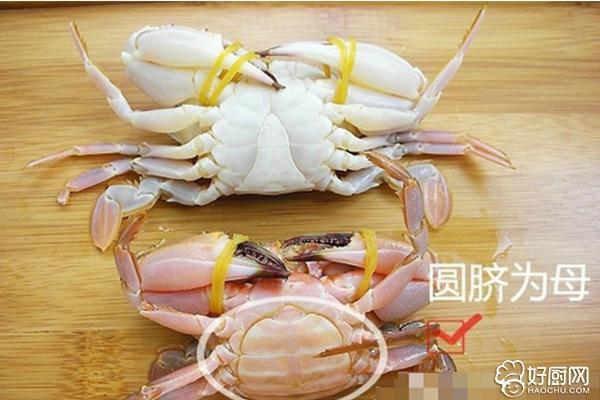 如何挑选螃蟹_5