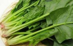 经常吃菠菜有助防老年痴呆症_1