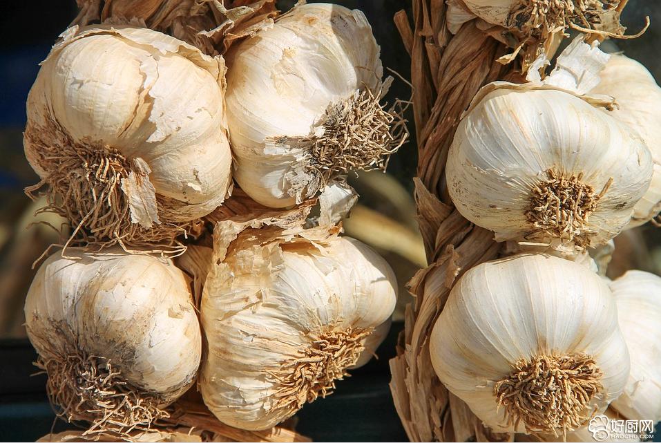 大蒜,天然的广谱抗生素_1