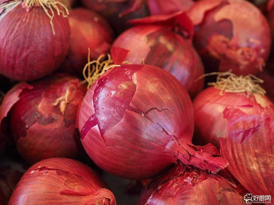 常吃洋葱能防治肠道炎症和痢疾_1