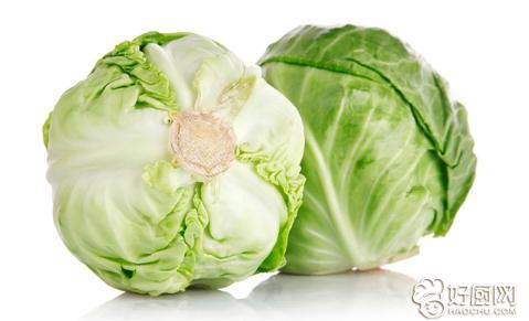 圆白菜的食用方法_1