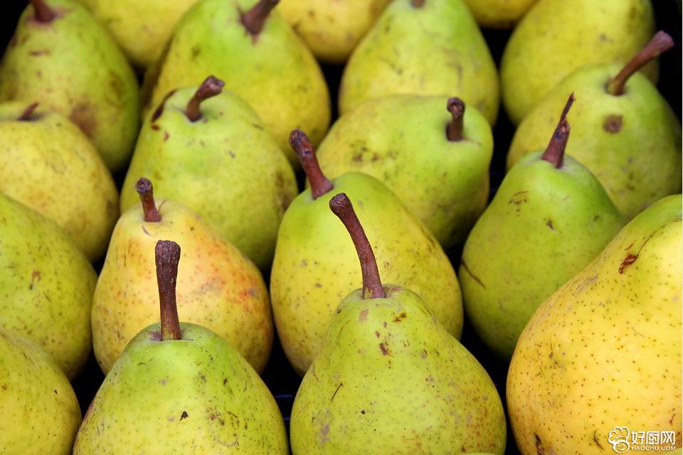 梨的功效作用 饭后吃梨可排除致癌物_1