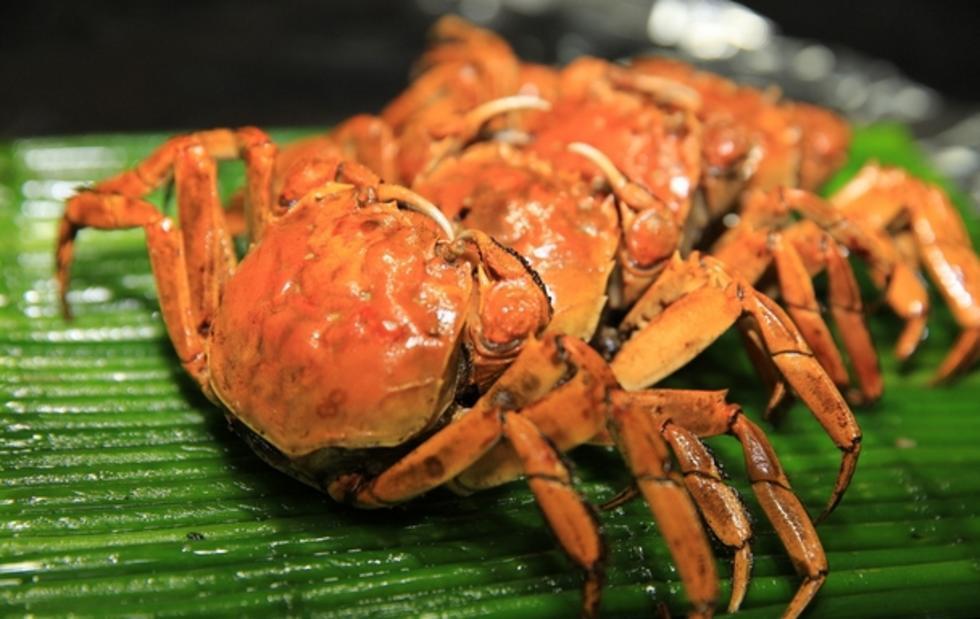 排毒减肥_石臼湖螃蟹